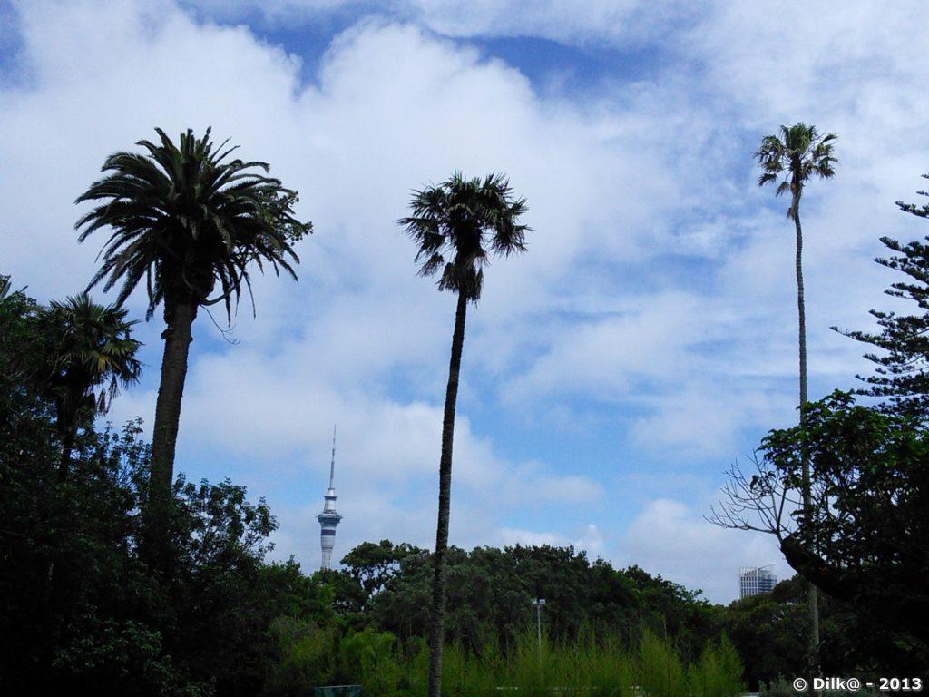 La Sky Tower au milieu des palmiers