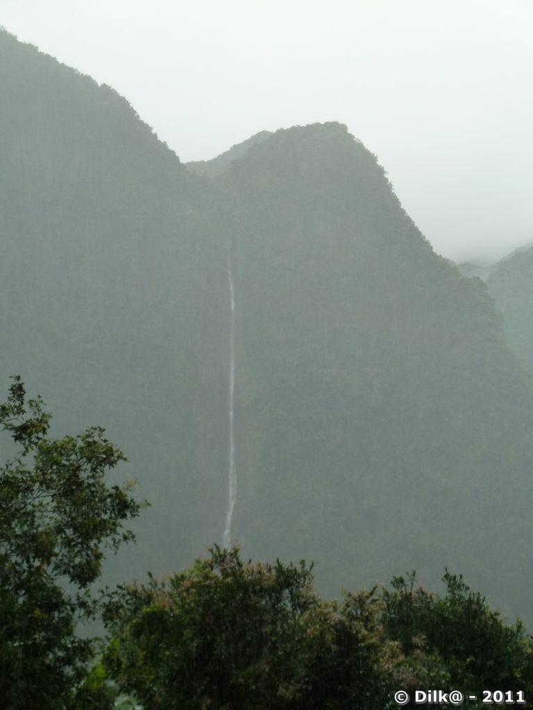 la cascade Blanche : long fil d'eau qui sort au milieu de la verdure