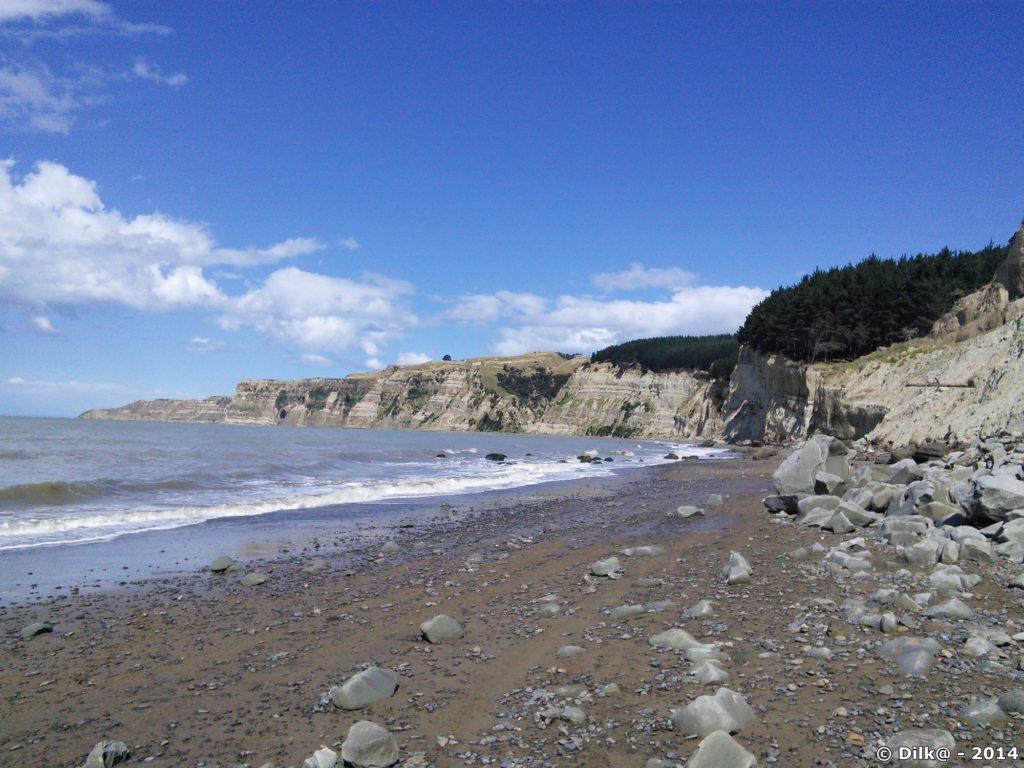 Au bout des falaises de cape Kidnappers : une colonie de fous de bassans
