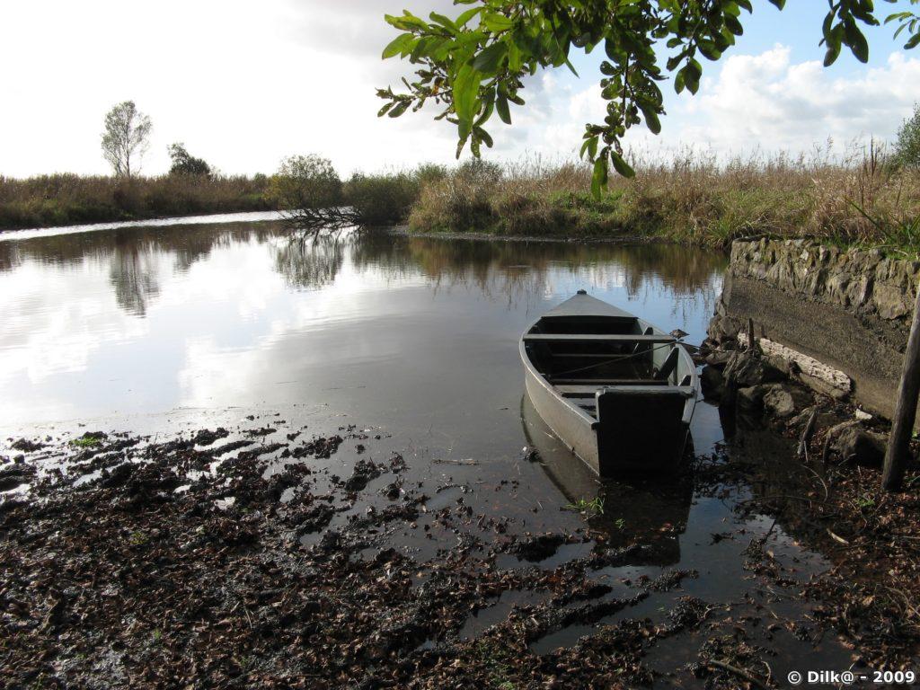 Barque en Brière