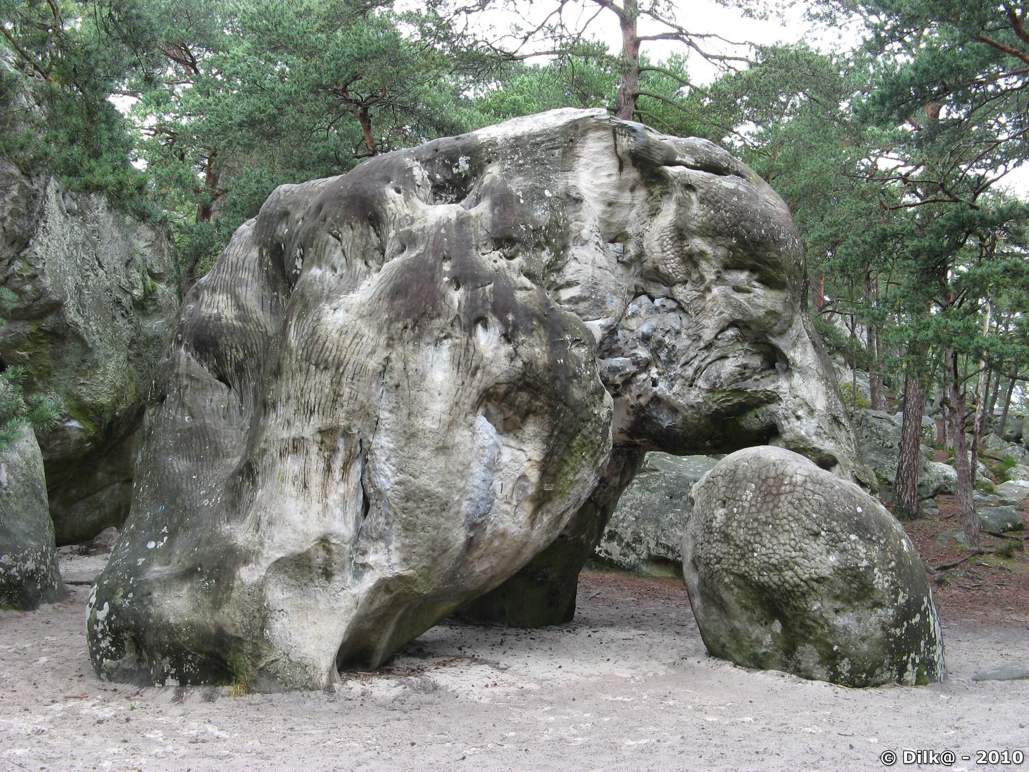 L'éléphant de Larchant