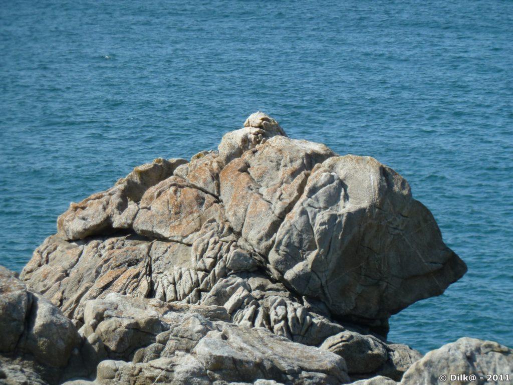 le rocher de l'ours