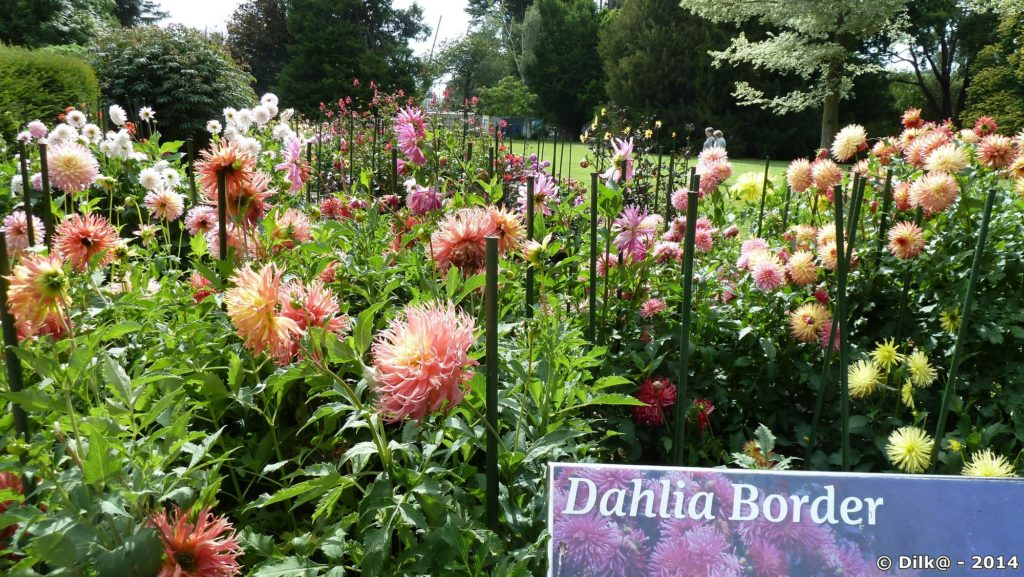 Jardins botaniques de Christchurch