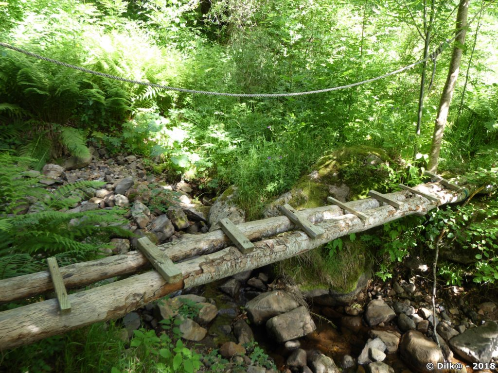 Petit pont sur un torrent
