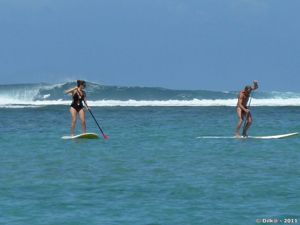 Paddle devant la barrière de corail