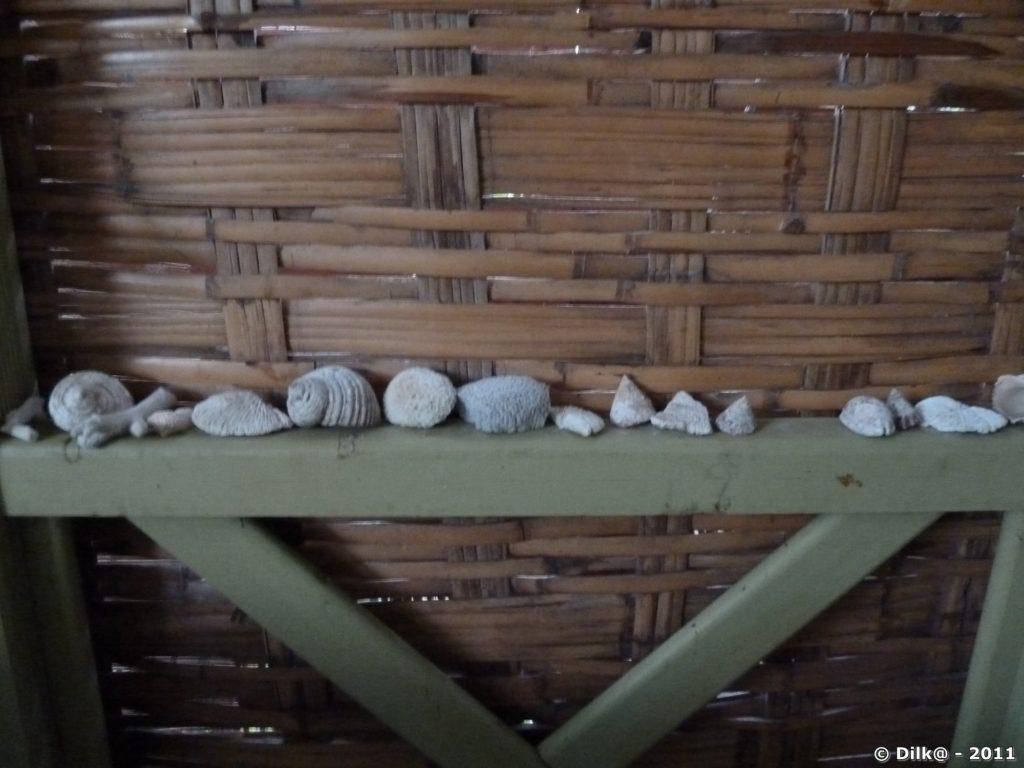 Décoration dans notre varangue
