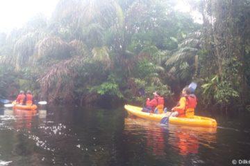 Balade en canoë sur les canaux de Tortuguero