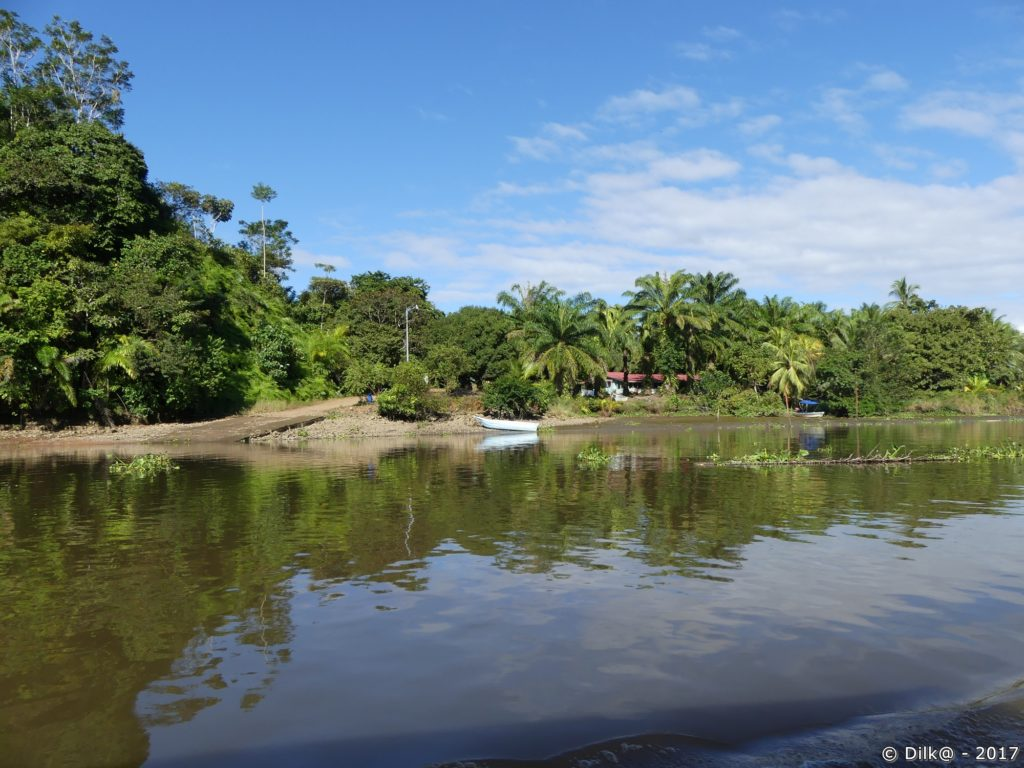 habitations le long du Rio Sierpe