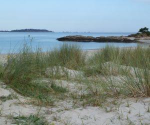 Le tertre Corlieu dans la baie de Lancieux