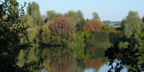 Reflets de couleurs de l'automne sur l'étang