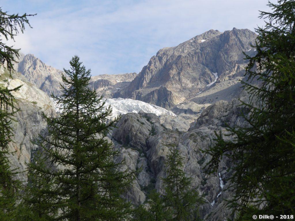 Le Glacier Blanc depuis le pré de Madame Carle
