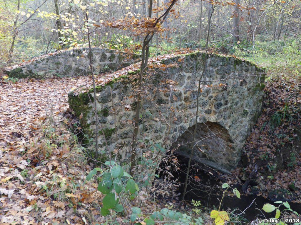 Petit pont en pierre en forêt