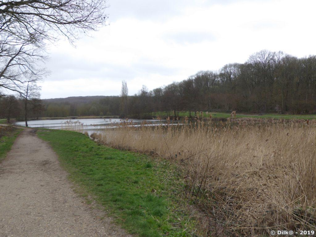 Les étangs de la Chasse devant le château