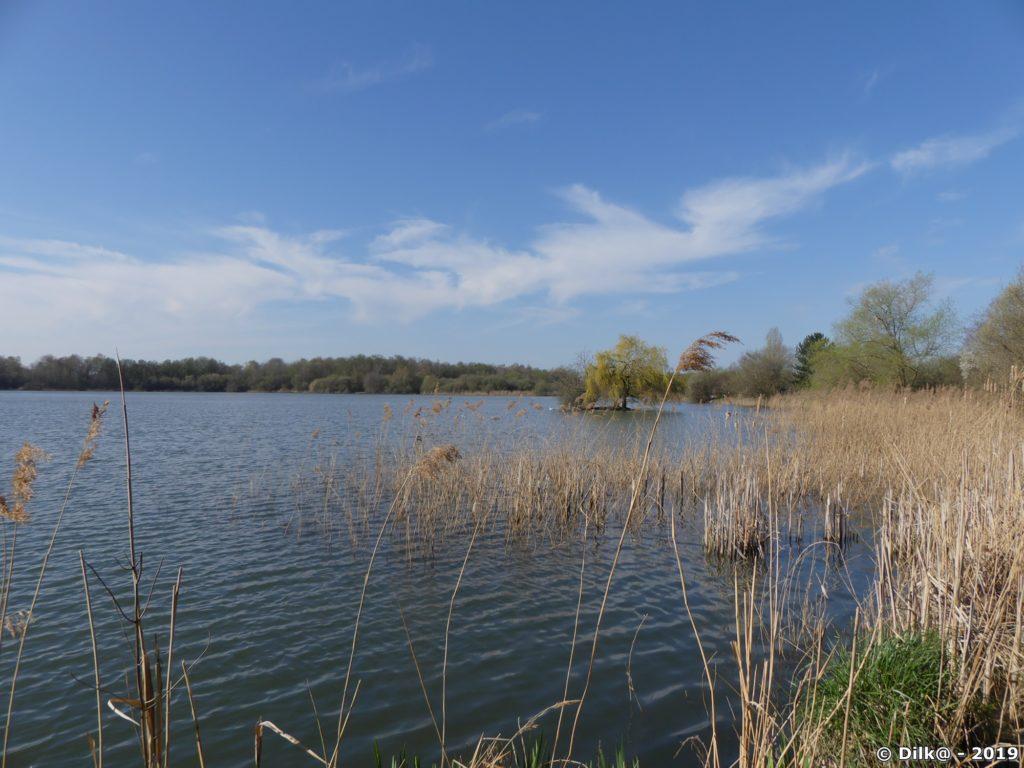 Les étangs des Noës