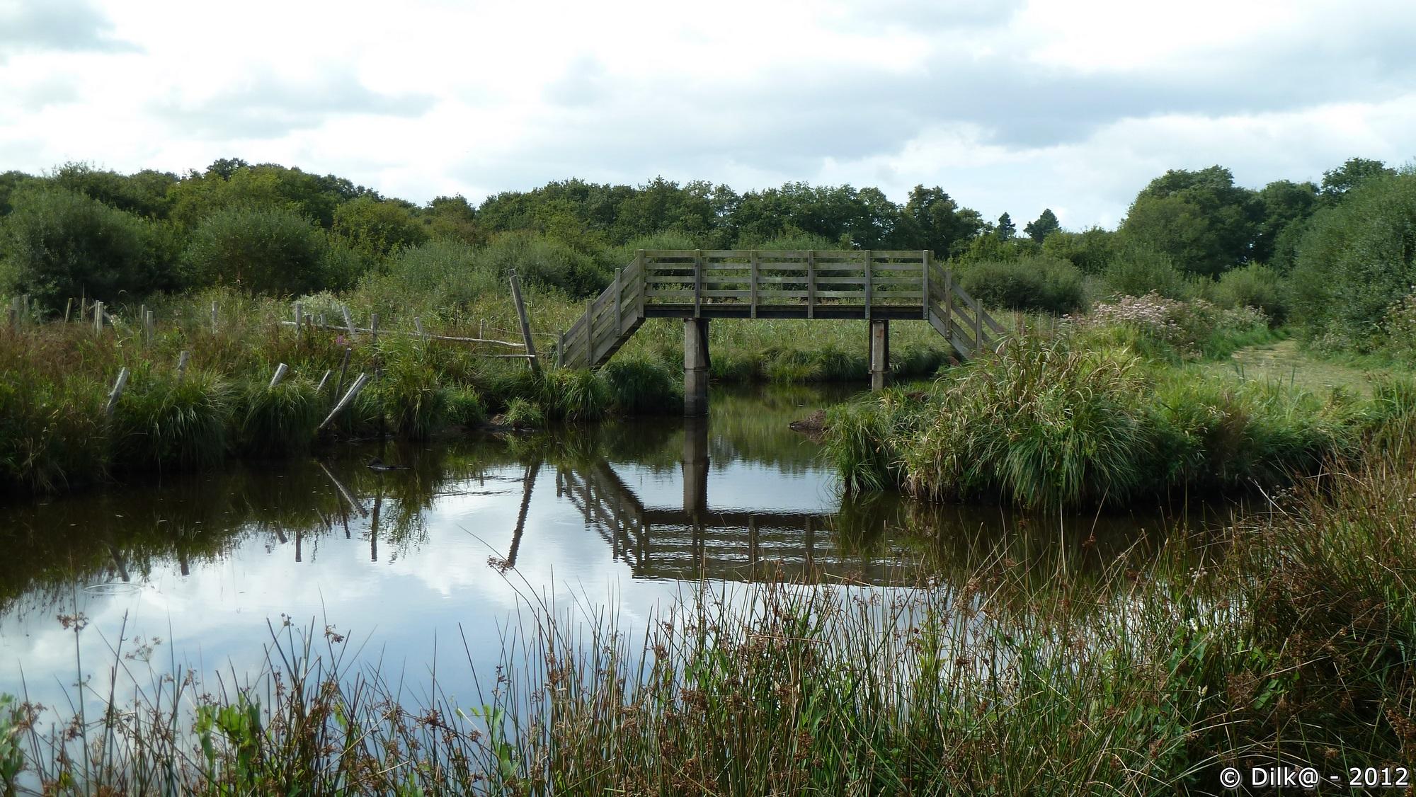 Petit pont pour passer d'un îlot l'autre