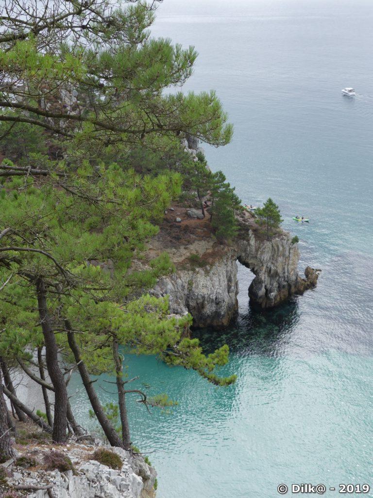 Les falaises abruptes et les pins maritimes