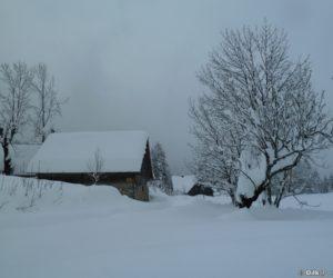 Refuge de Koca na Uskovnici sur le plateau de Pokljuka
