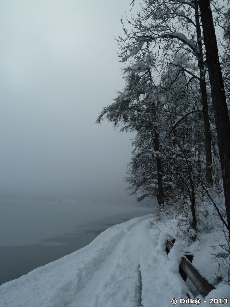 Le lac dans la brume du matin