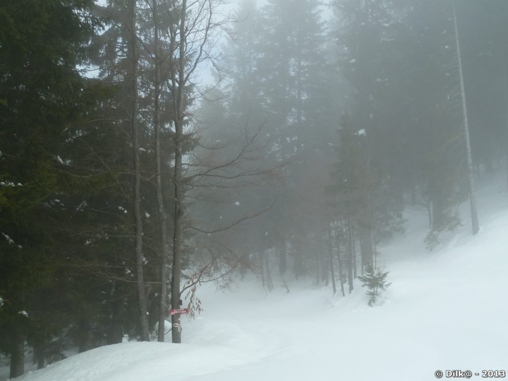 On se perdrait vite dans ce brouillard...