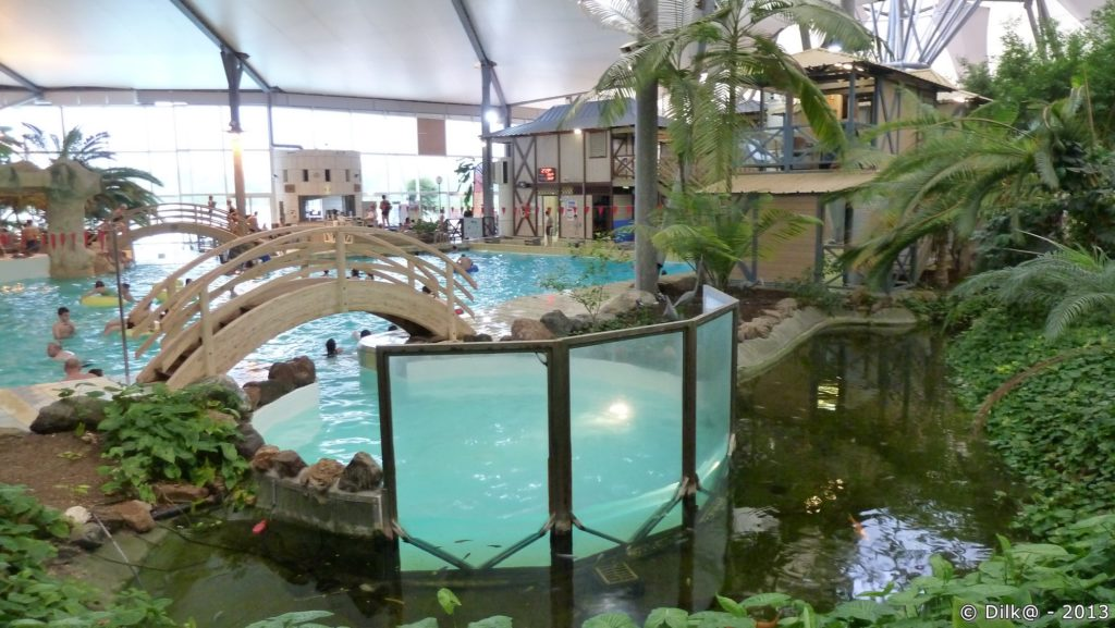Le bassin « lagon » et le jardin tropical