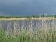 Le marais de Ménard