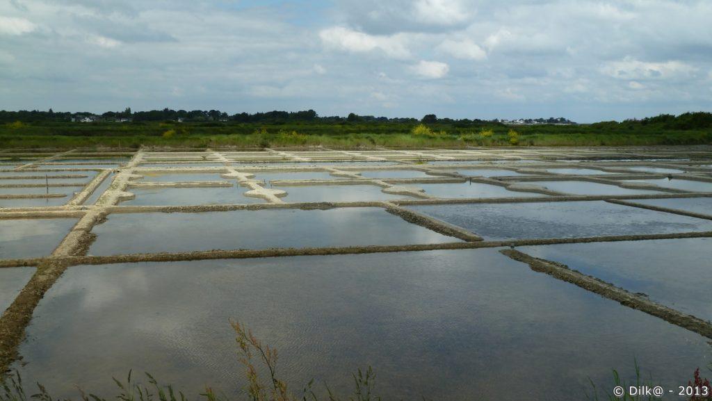 Les marais du Rostu
