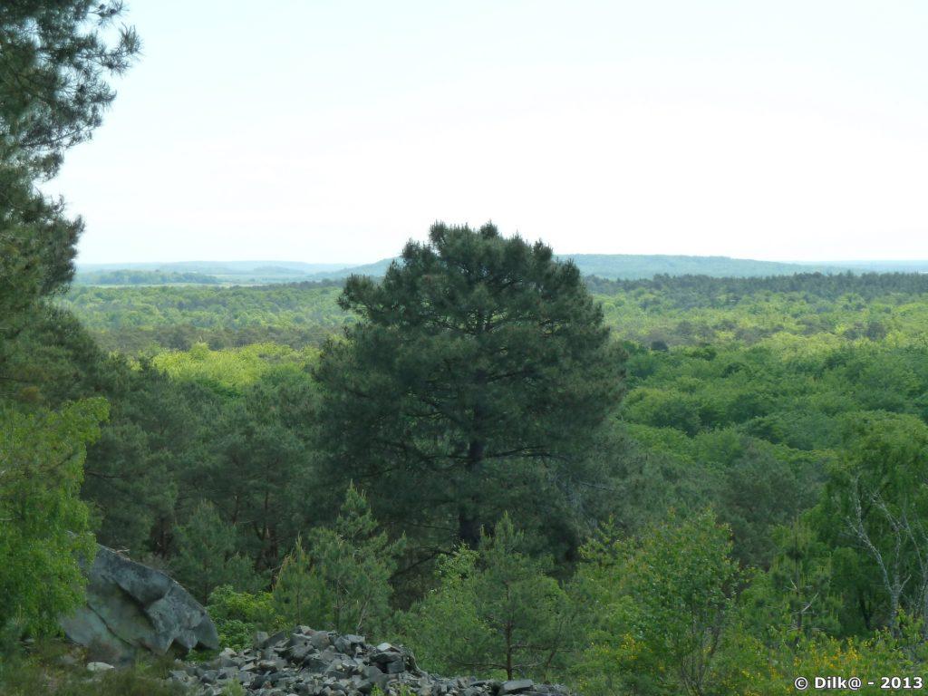 Carrière en forêt de Fontainebleau