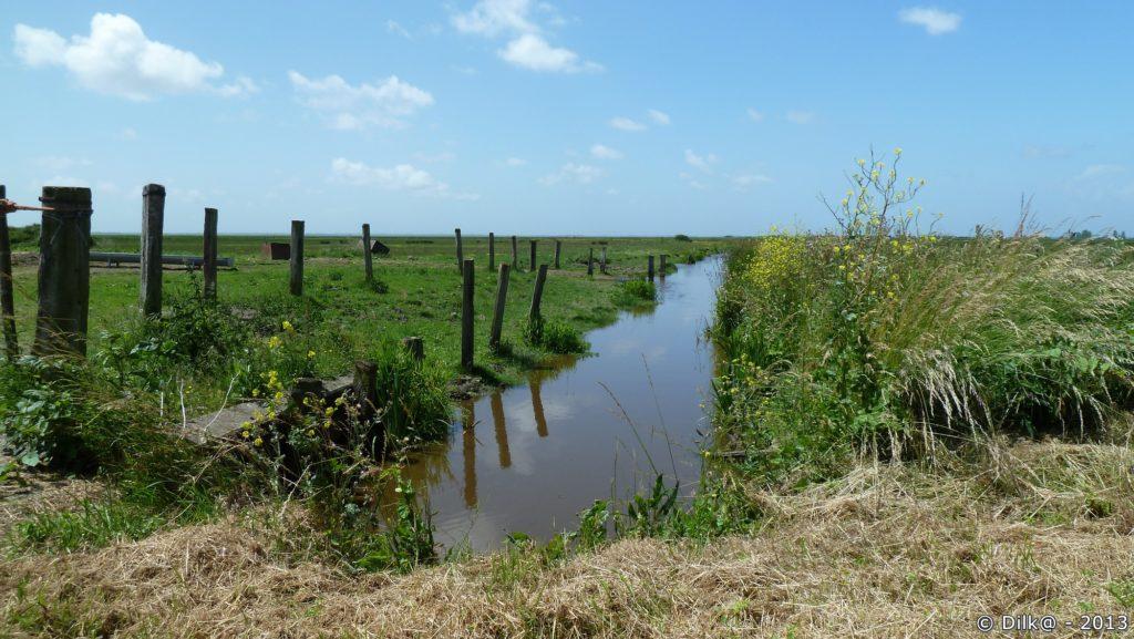 Canal en Brière