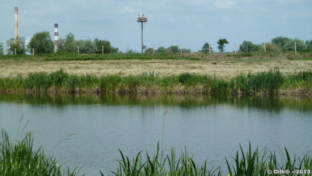 Au milieu, une aire de cigognes et au fond à gauche, les cheminées de Cordemais