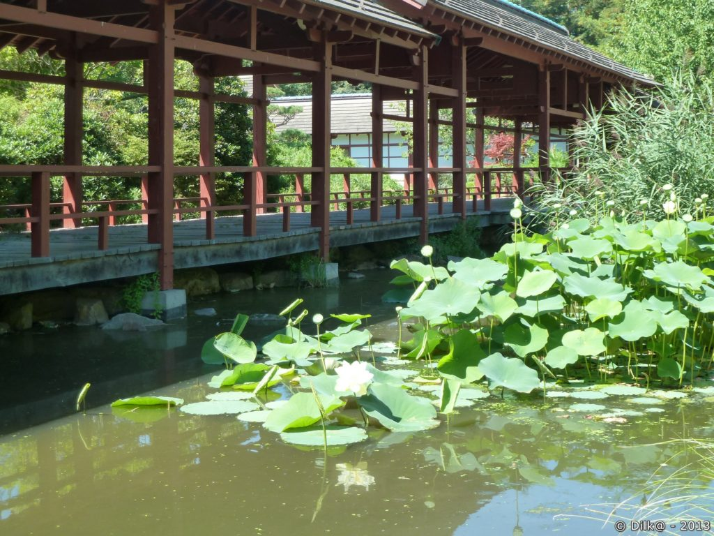 Le jardin de l'île de Versailles à Nantes