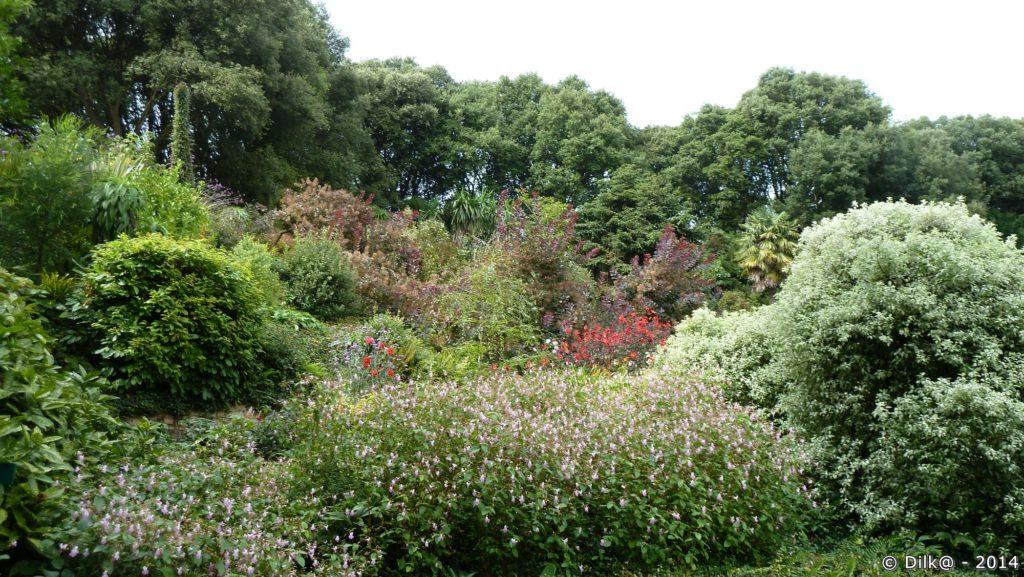 Le jardin des terrasses