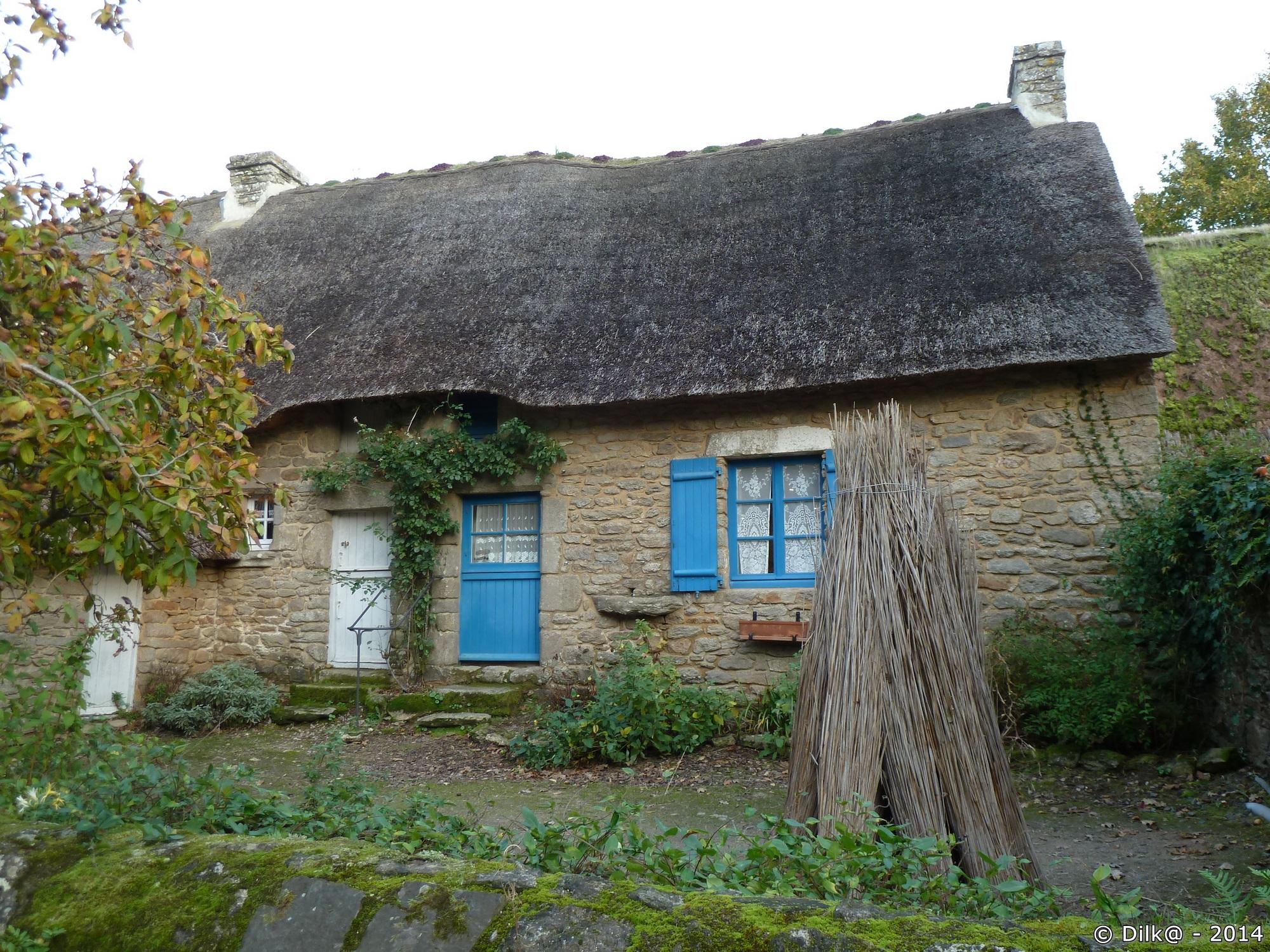 Quelques roseaux pour un toit de chaume