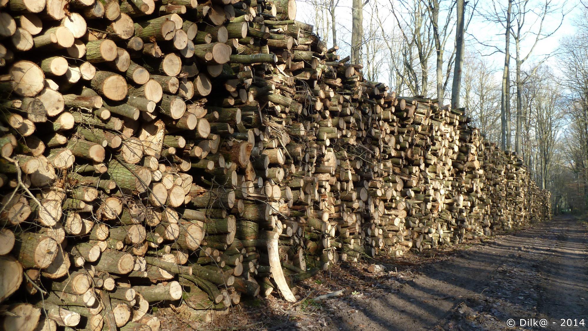 Du bois pour tout l'hiver...