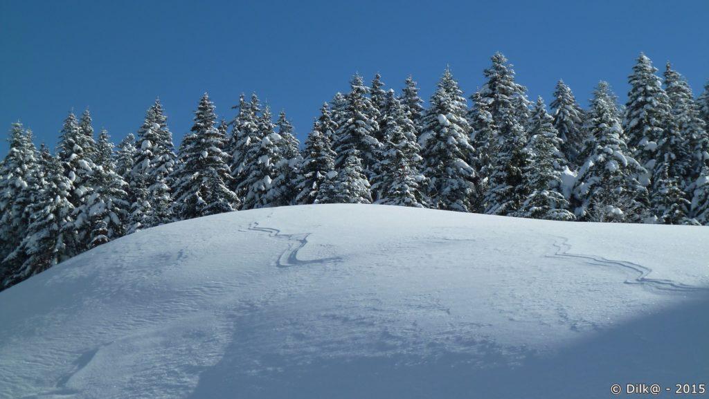 Une trace dans la neige fraîche