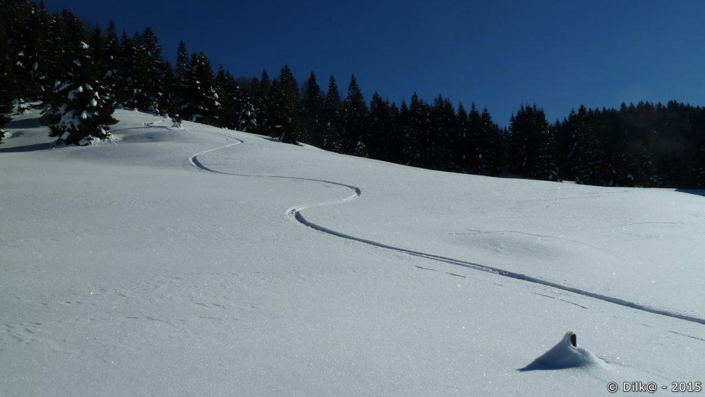 Traces dans la neige fraîche