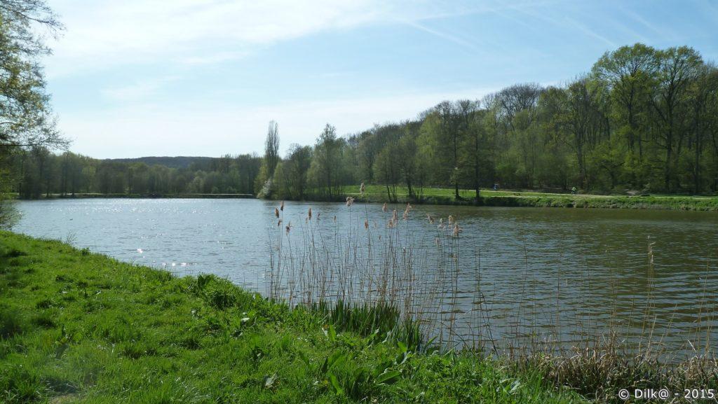 L'étang de la Chasse