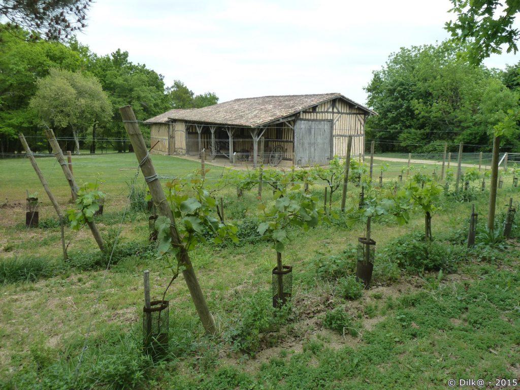 La cabane du vigneron