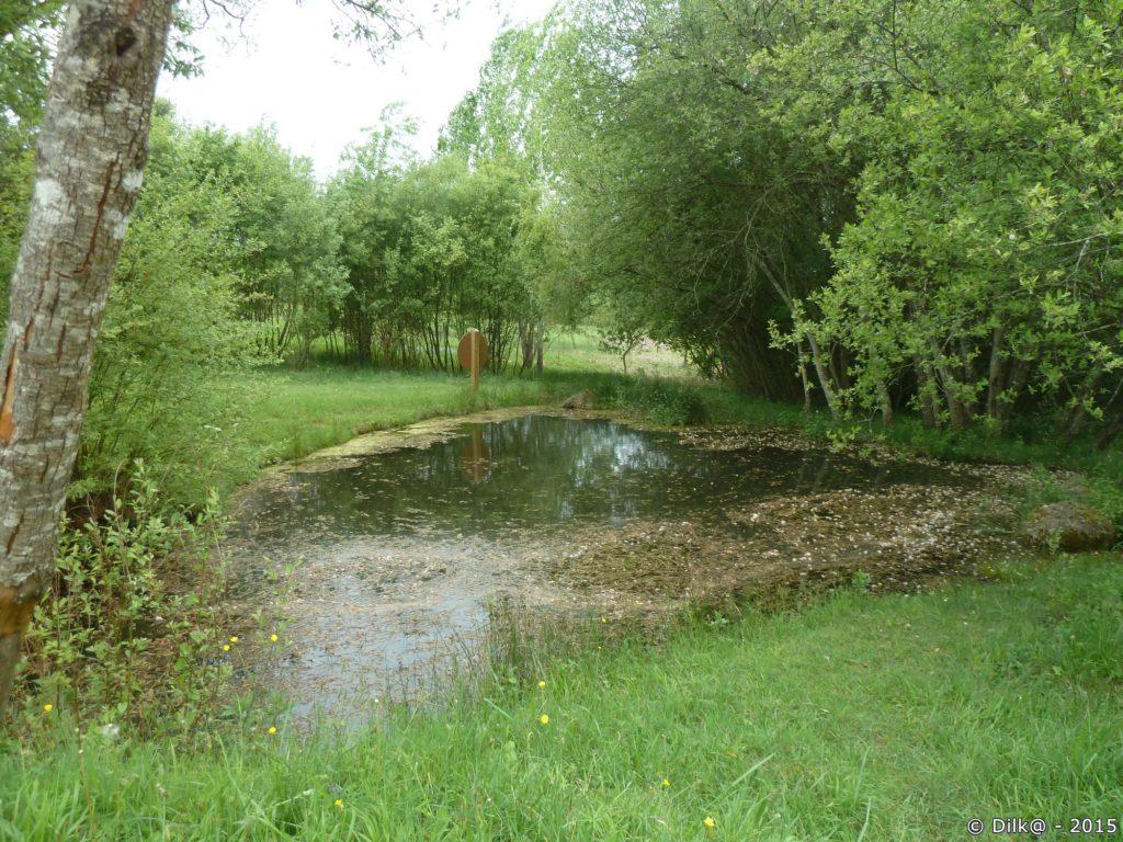 L'étang près de la réserve à papillons
