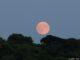 Super Lune après le coucher du soleil