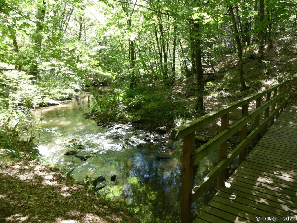 Les gorges boisées de la Franche-Valeine