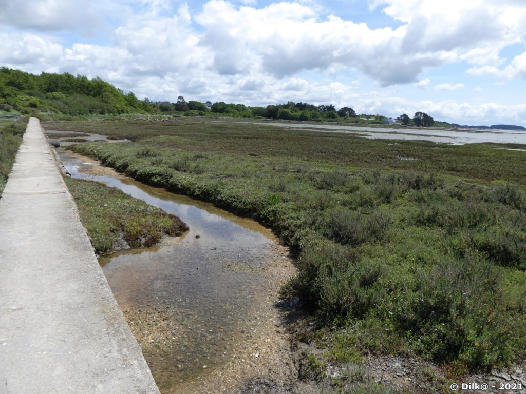 Digue qui permet de traverser le marais au sud de Port-Anna