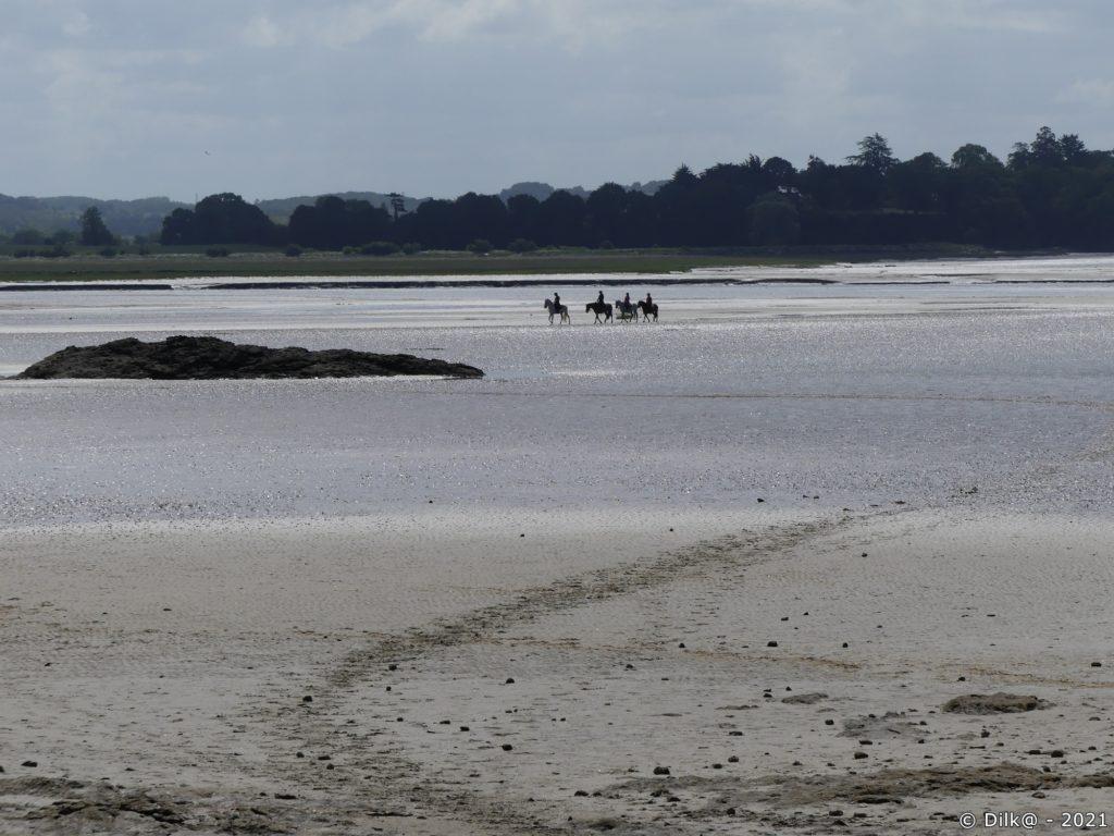 Des chevaux traversent la baie à marée basse