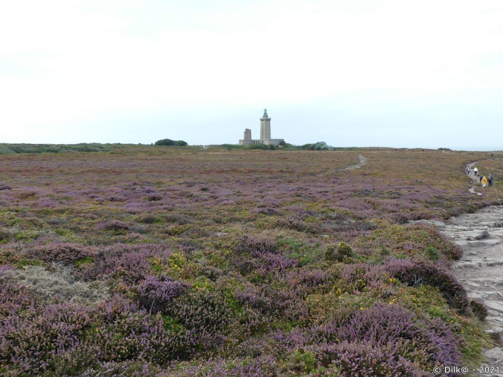 La phare du Cap Fréhel et la lande