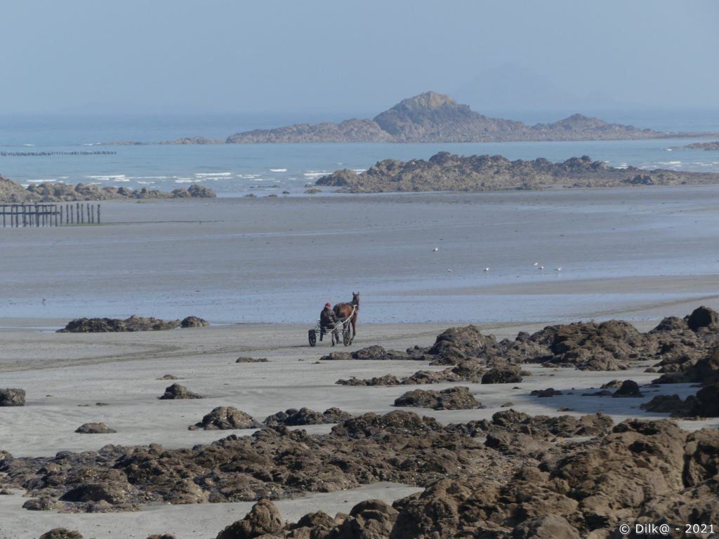 Un jockey qui s'entraine sur la plage