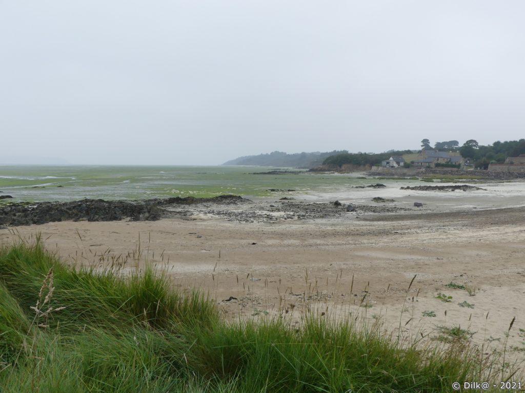 La plage de l'Hospitalet avec les algues vertes