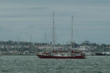 Combien de bateaux sont amarrés... impossible de compter