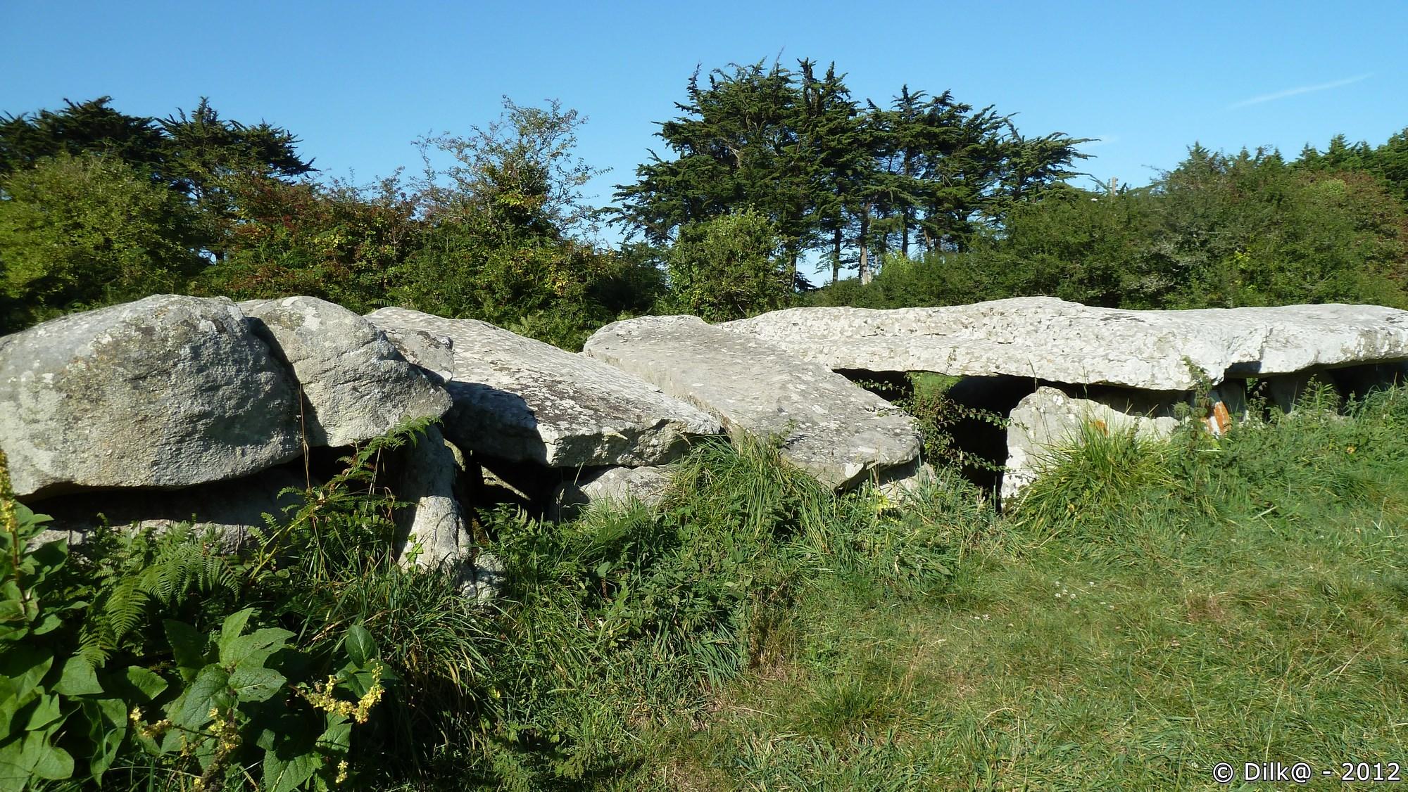 L'allée couverte de Prajou-Menhir