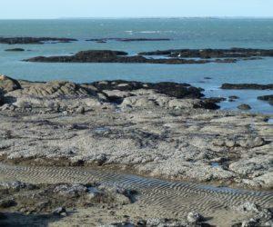 La côte de Piriac-sur-Mer