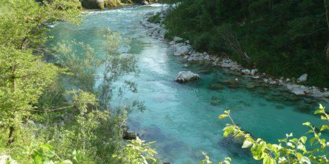 Les eaux vert émeraude de la rivière Soča