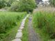La voie romaine de Gras